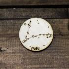 Знак зодиака РЫБЫ ZZ012