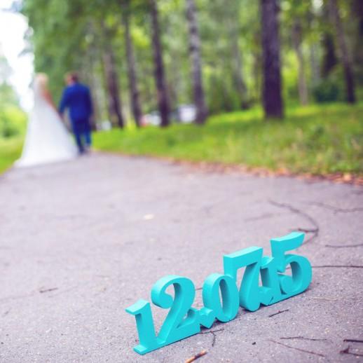 Дата свадьбы DS001
